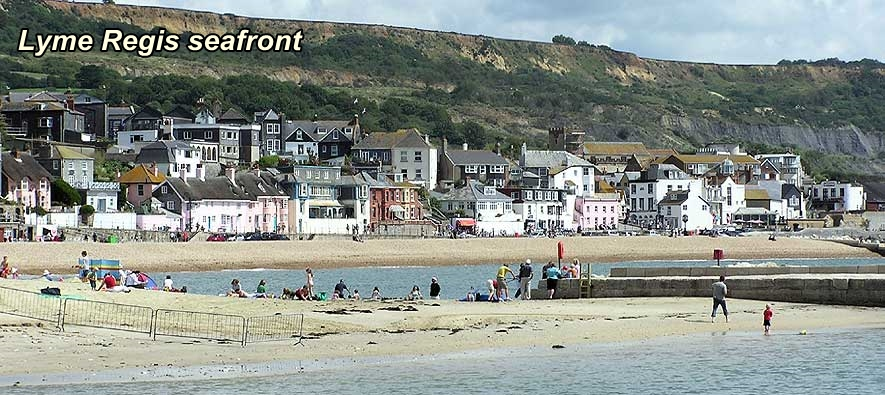 Dog Friendly Hotels Lyme Regis